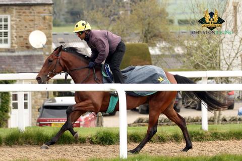 Babu Singh johnston racing