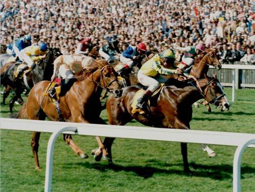Mister Baileys mark johnston racing